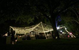 gallery-fairy-lights-7